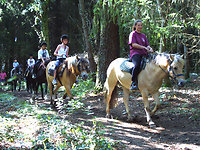Attractions & activities . riding